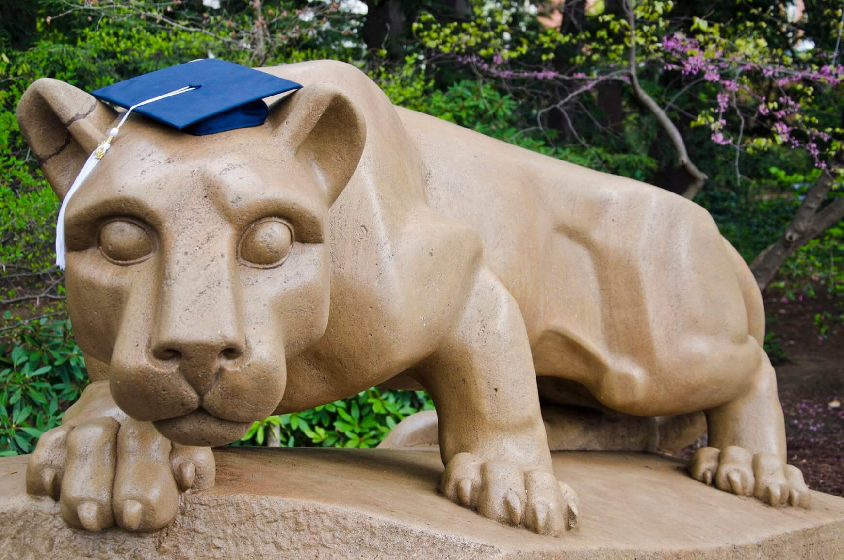 Penn State Nittany Lion graduation cap